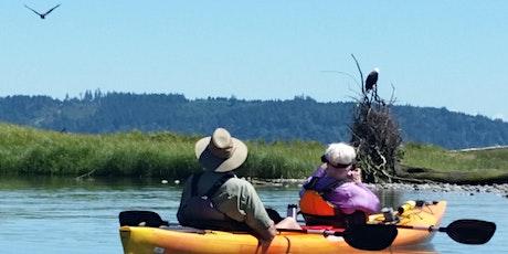 Bald Eagle Viewing Kayak Tour tickets