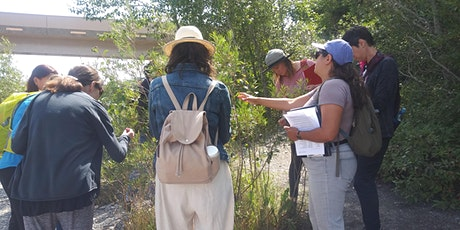 Edible and Medicinal Plant Walk in Inglewood Bird Sanctuary tickets
