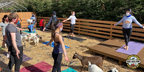 Goat Yoga at Lemos Farm tickets