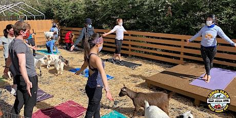 Goat Yoga at Lemos Farm tickets