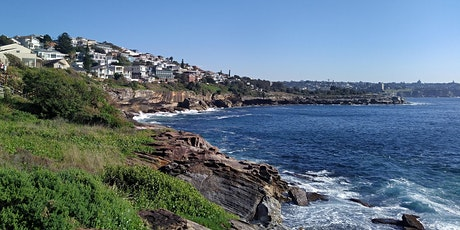 Plogging in Coogee tickets