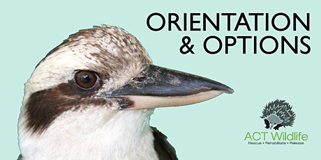 ORIENTATION - (Online depending on Covid status) tickets