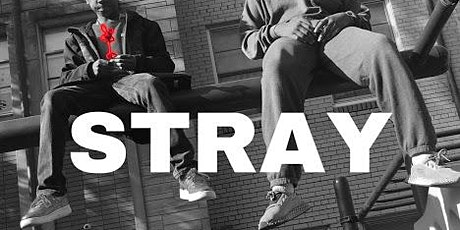 A Black Carpet Affair; Stray Movie Premier & Award Celebration tickets