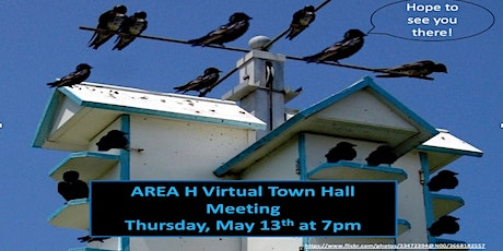 Virtual Town Hall Meeting - Area H tickets