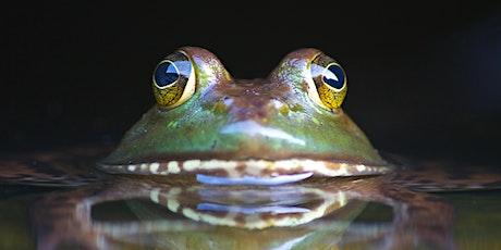 Walpole NH Biodiversity Project Informational Meeting tickets