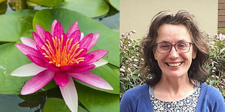 Exploring the Brahma Viharas: an online day retreat with Laura Bridgman tickets