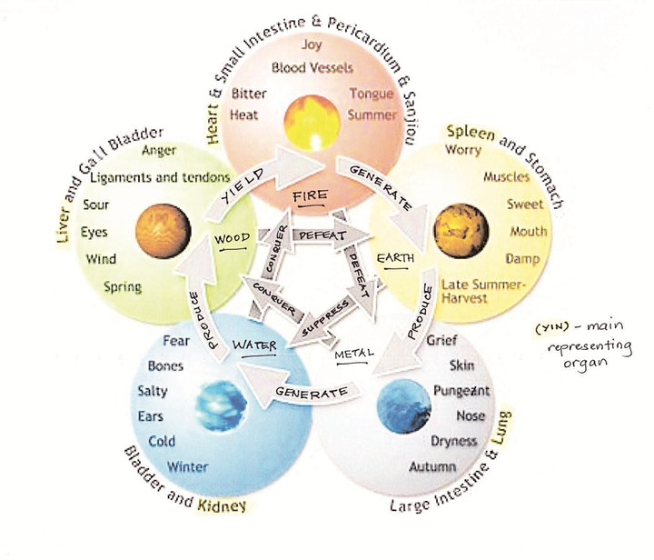 5 Element Chinese Medical Qigong - 5WK Course image