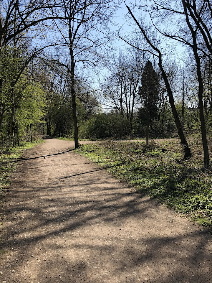6 Mile gorgeous walk to Silverhill Wood image