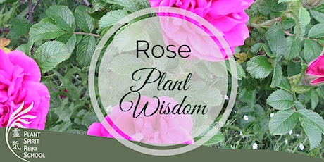Rose Plant Wisdom Circle tickets
