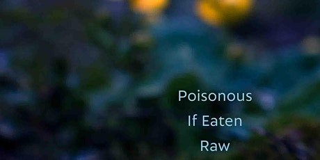 Virtual Book Launch: Poisonous If Eaten Raw by Dr. Alyda Faber tickets