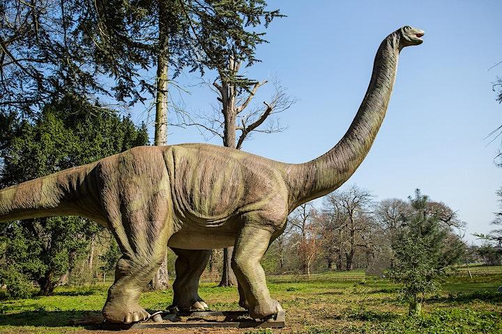 Dino Kingdom Manchester image