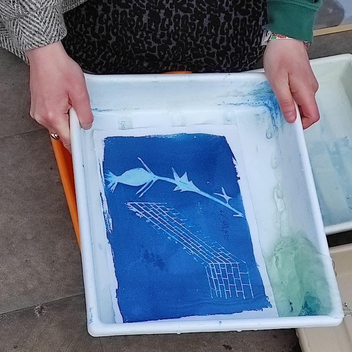 Yarmouth Springs Eternal: Cyanotype Photography with Genevieve Rudd image
