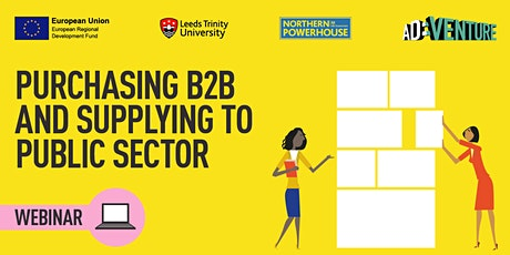 Purchasing B2B and Supplying to Public Sector tickets