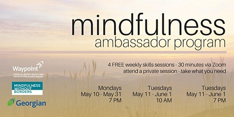 Mindfulness Ambassador Program ingressos