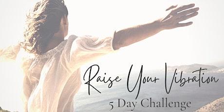 Raise Your Vibration - 5 Day VIVAYA Challenge tickets