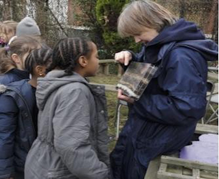 Outdoor learning and play consultation image