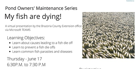Pond Owner Maintenance Series:  My fish are dying! tickets