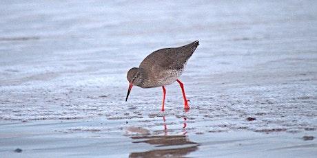 Coastal Wildlife Walk tickets