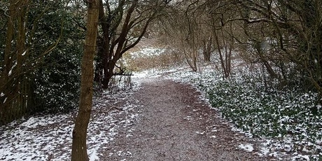 Flora and Fauna in Knowle Hill Nature Reserve tickets