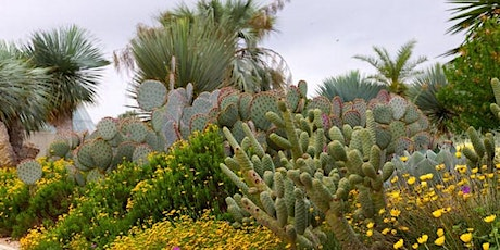 Landscape Lecture Series: Xeriscape Gardening tickets