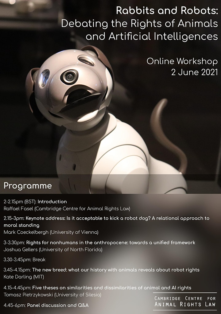 Rabbits & Robots: Debating the Rights of Animals & Artificial Intelligences image