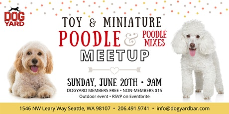 Toy & Miniature Poodle & Poodle Mix  Meetup at the Dog Yard tickets