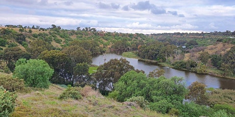 Nature Discovery Walk - Werribee River Park tickets