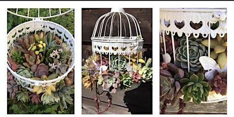 Succulent Bird Cage tickets