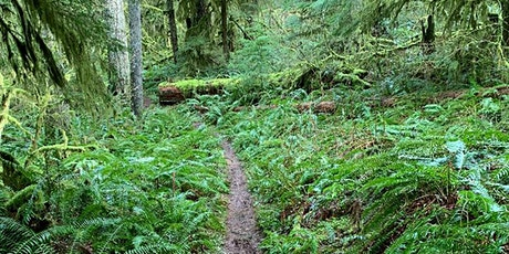 Silver Falls State Park Trail Party tickets