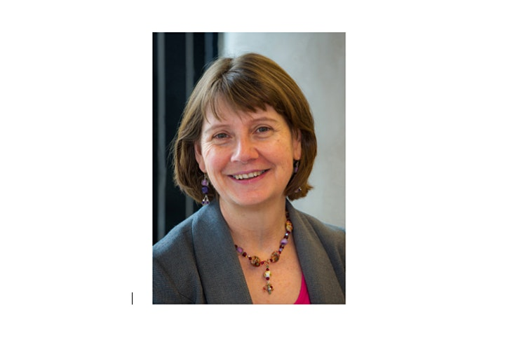DLF Lunchtime Series. Educational leadership: Prof Liz Johnson image