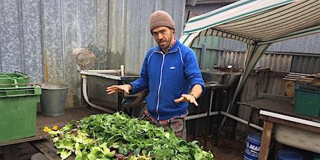 Native edibles - Bush Tucker Gardens tickets