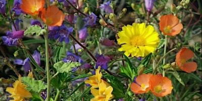 California Native Plants Hands-on Educational Work