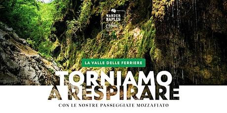 La Valle delle Ferriere - Torniamo a respirare  - passeggiate mozzafiato biglietti