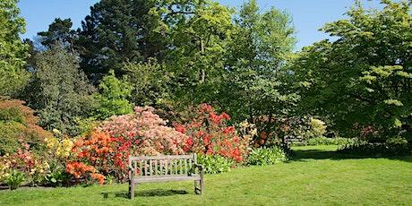 Zoom around beautiful Borde Hill Garden tickets