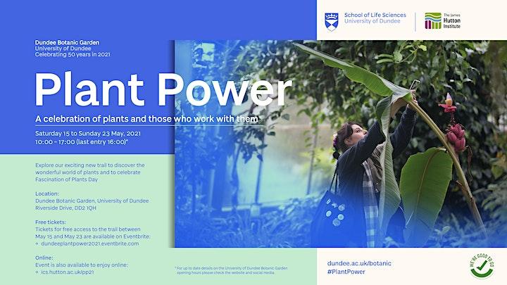 Dundeeplantpower2021 image