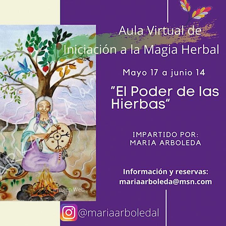 Imagen de EL PODER DE LAS HIERBAS ,  INICIACION -AULA VIRTUAL-