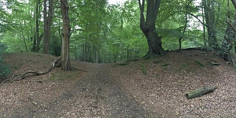 Epping Forest's Iron Age hillforts: an Ambresbury Banks guided walk tickets