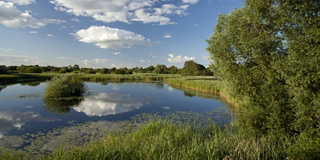 Celebrate the Fens Day - Guided Walk at Woodwalton Fen tickets