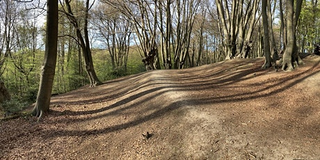 Epping Forest's Iron Age hillforts: a Loughton Camp guided walk tickets