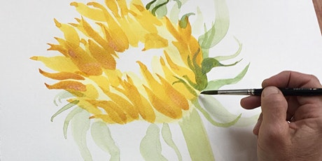 Sunflowers - Plant study workshop in pencil and watercolour with Jill Dow tickets