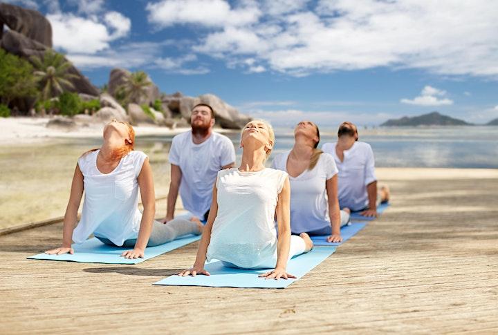 Yoga and  Wellness Retreat image