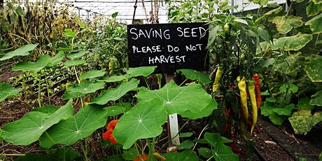 Making Room For Seed - Seed Production in Market Gardens tickets
