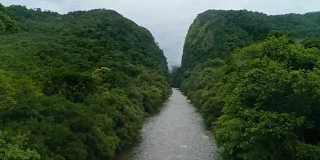 Foro de Negocios Verdes: Conservación y Restauración de la Amazonía entradas