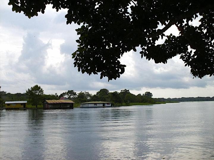 Imagen de Foro de Negocios Verdes: Conservación y Restauración de la Amazonía