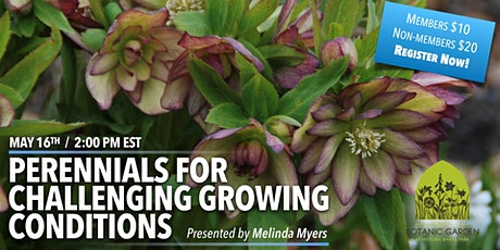 Perennials for Challenging Growing Conditions with Melinda Myers tickets