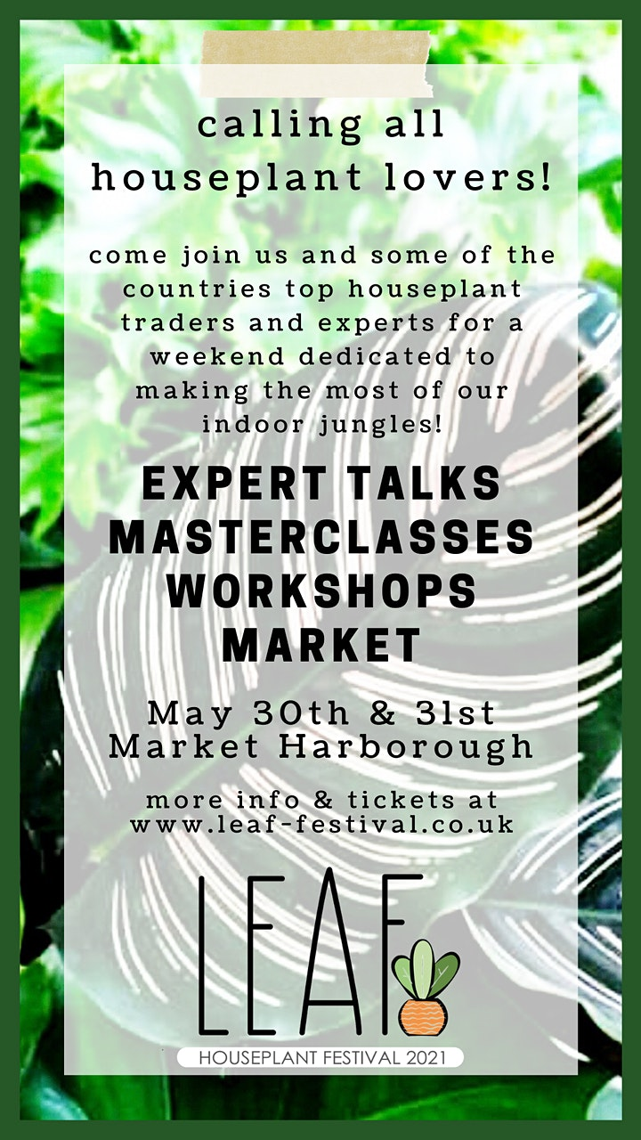 Ellen Mary – Houseplants For Wellbeing – Expert Talk image