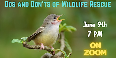 Dos and Don'ts of Wildlife Rescue tickets
