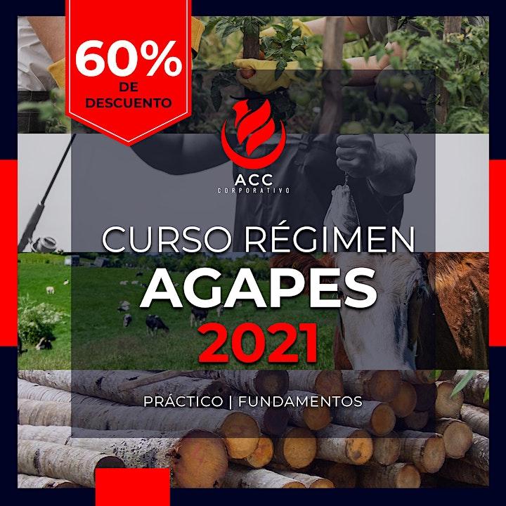 Imagen de Curso AGAPES 2021