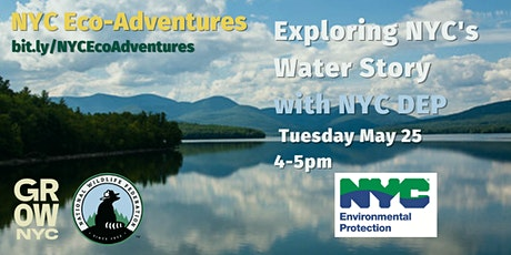 Exploring NYC's Water Story with the NYC DEP (Virtual Workshop) tickets
