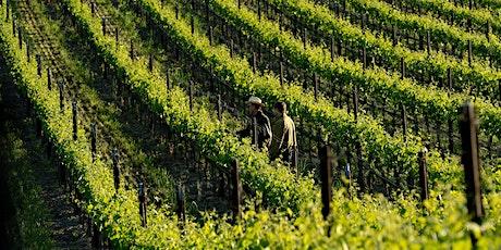 San Luis Obispo & Edna Valley Wine Trip tickets